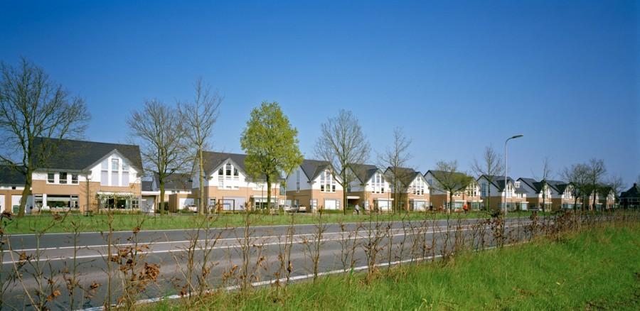 Parkstrip: Bellefleur 1-13